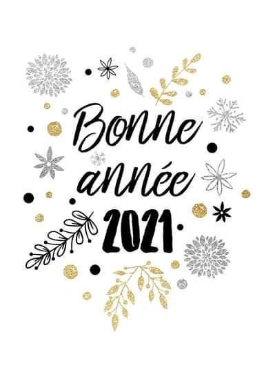 Photo de la news Vœux 2021